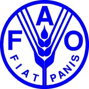 Fao2-300x300